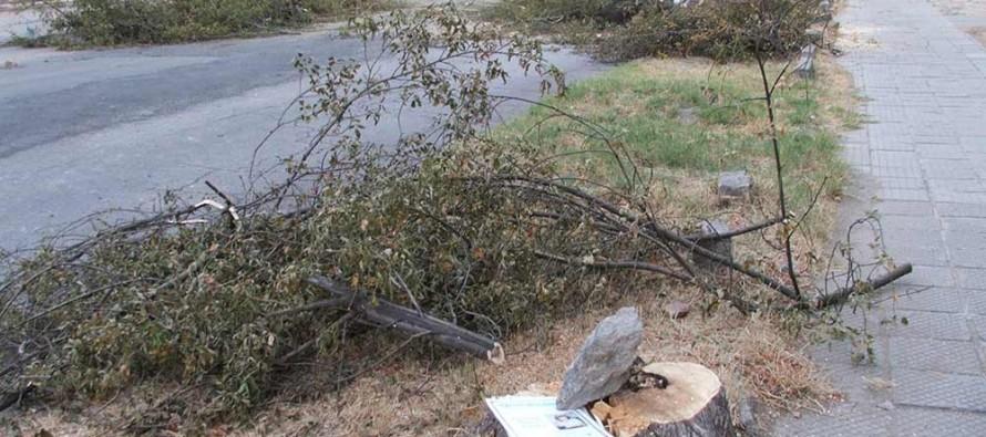 Грандоманска стихия вилнее в центъра на Харманли
