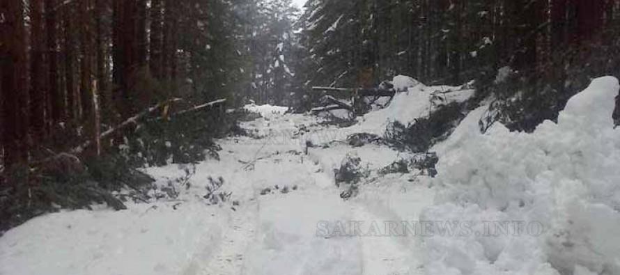 Бедствено положение обявиха и в Ивайловград