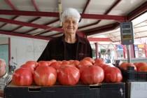 Улични музиканти, пенсионери-продавачи и чужденци-купувачи на пазара в Харманли