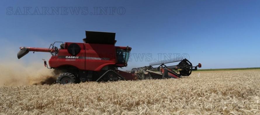 Жътвата в община Болярово приключва с по-слаби добиви