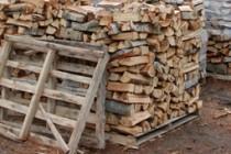 Община Харманли продава най-скъпите дърва в региона