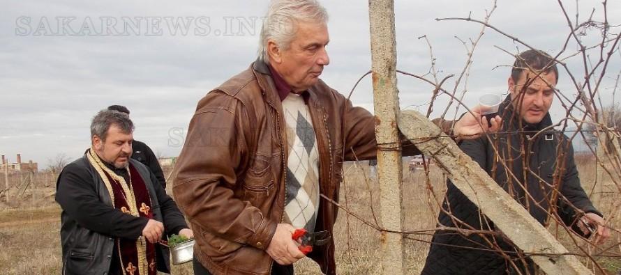 Клетва на Дионисий прозвуча в тополовградските лозя