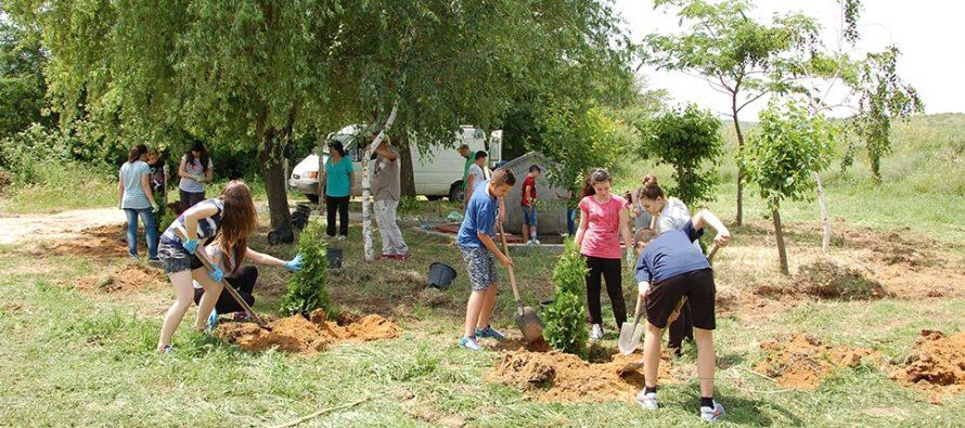"""Деца реализираха първа стъпка на проекта  """"За зелено Харманли"""""""