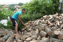 Няма криза при дървата  за огрев в Тополовград