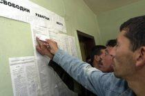 Стартира процедура за прием на заявки по Програма за обучение и заетост на безработни