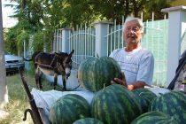 Бай Гошо продава от 44 години известните дини на Любимец