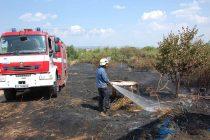 Спряха пожара край село Богомил навреме