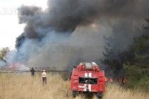 Изгоря кошара насред борова гора
