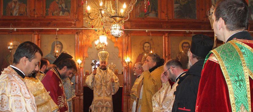 Владиката отслужи литургия в село Мезек