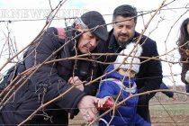 """Изпълнения на гайда и баян за Трифоновден във винарна """"Братанов"""""""