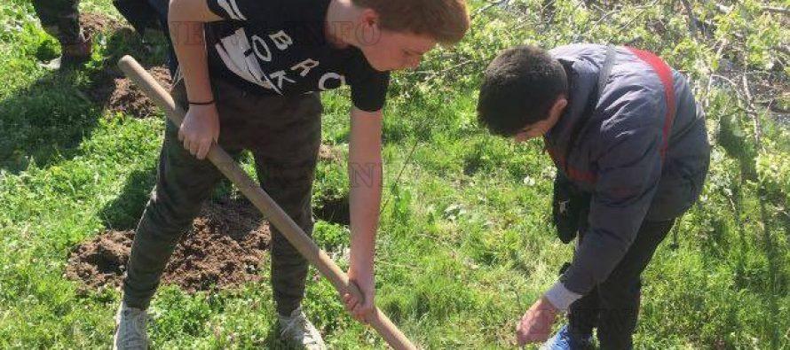 Деца засадиха фиданки в  опожарени през лятото гори