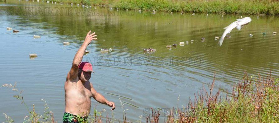 Измира риба в язовир край Шишманово