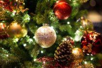 Предстои да грейнат светлините на Коледните елхи в региона