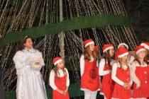 """""""Коледна магия, скрита в кутия"""" даде старт на празниците в Харманли"""