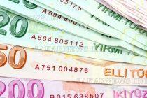 """""""Закъсал"""" митничар присвоил 100 000 лири веществено доказателство"""