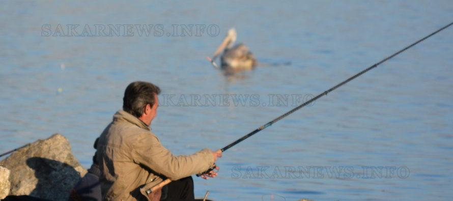 Рибари и пеликан ловят риба на Топлото езеро в Гълъбово