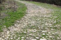 Строителството на пътя  Татар – Пазарджик – Харманли