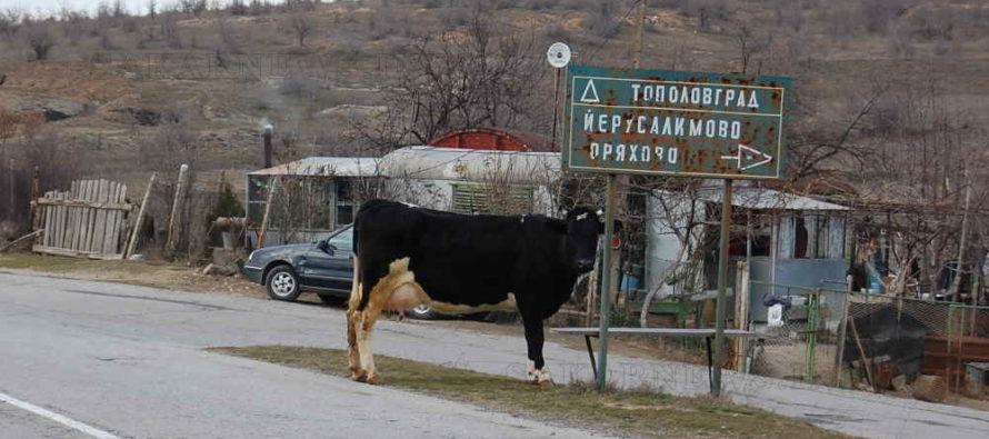 Търсят изпълнител за ремонт на пътища до селата  Йерусалимово и Васково