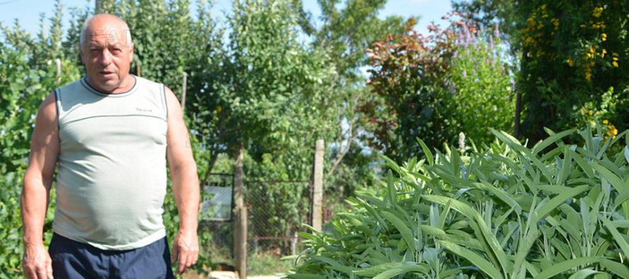 """Тодор Колев: """"Източните Родопи са най-богатото на билки място в страната"""""""