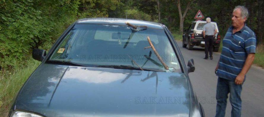 Сухи клони от дърво се забиха в предно стъкло на движеща се кола