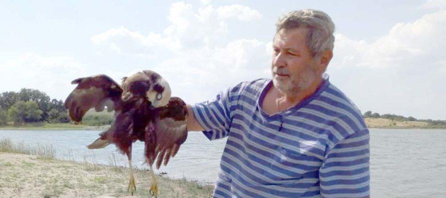 Ловец отрови защитен вид птица