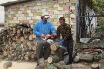Рев на резачки и удари от брадви огласят Тополовград