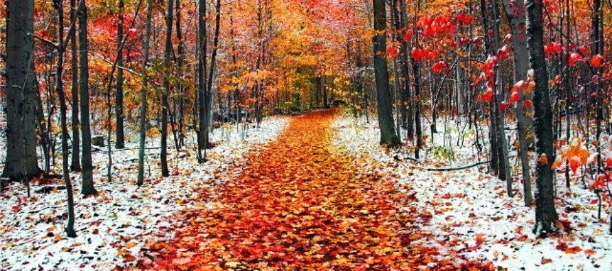 """Улови мига, """"Когато есента и зимата се срещат"""""""