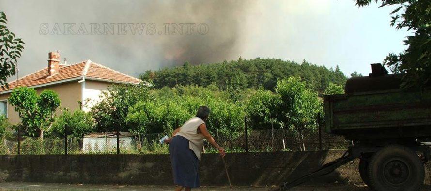 Изгоря още 2 000 дка 40-годишна борова гора