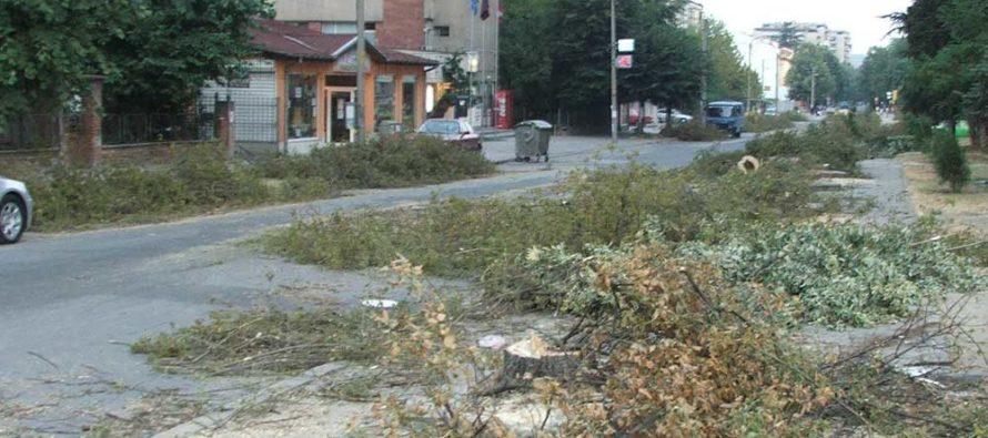"""Друго мнение на специалист за разширението на бул. """"България"""""""