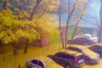 """Всички снимки за фотоконкурса """"Есенна треска"""""""