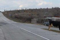 """Дружество  """"Европът 2005"""" ще ремонтира  пътища до села в харманлийско"""