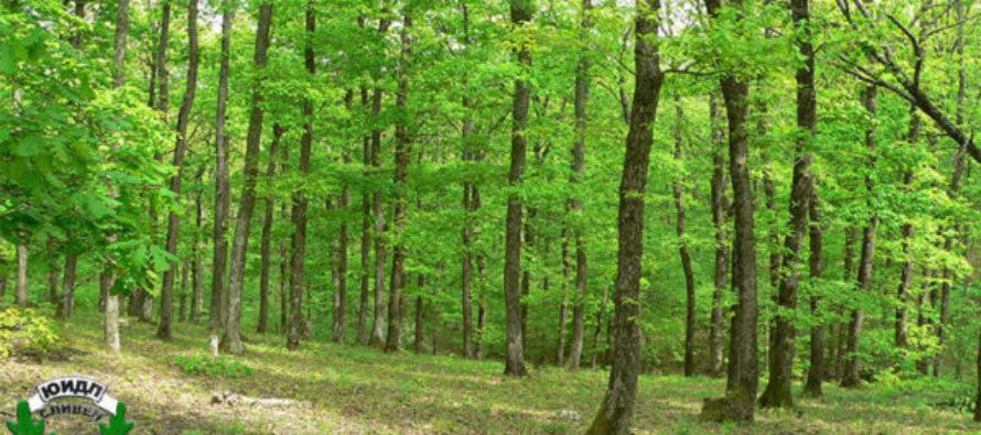 Две горски стопанства  са с нови директори