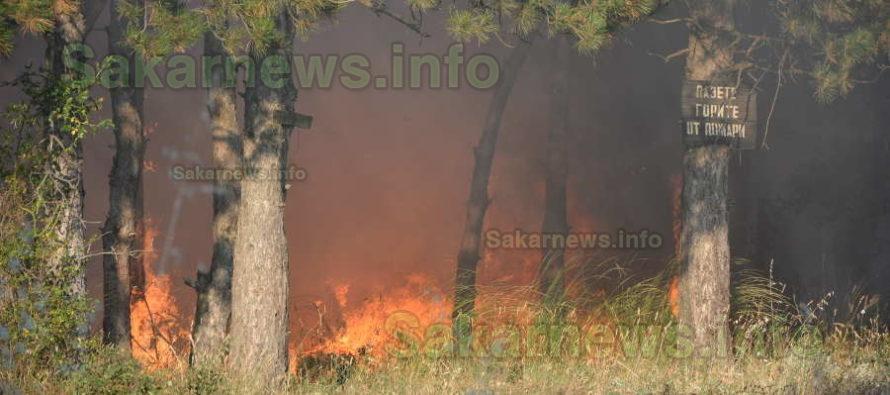 Огнеборци се справиха с три пожара край Харманли