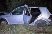 Кола катастрофира заради умряла на пътя лисица