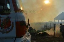 В село Белица изгоря обор, заедно с кравите в него