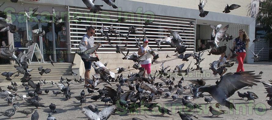 Ина, която храни ято гълъби в Румъния, е печелившата тази седмица