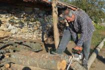 От Горското в Тополовград усилено зареждат хората с дърва за огрев