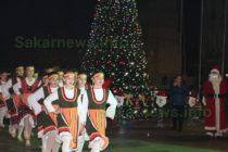 В Любимец грейна нова  7-метрова елха