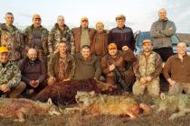 Още три вълка отстреляха в Сакара