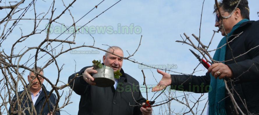 """Красимир Катев с две първи места стана """"Цар на виното"""" в Любимец"""