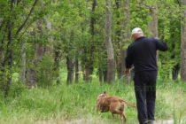 В парковете вече освен кучета, може да се разхождат и деца