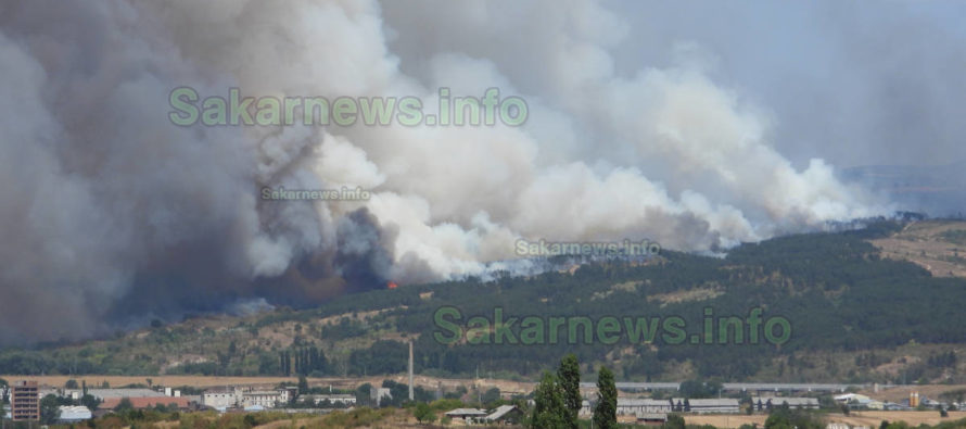 Голям пожар гори край Харманли