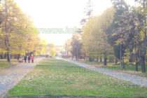 Градският парк в Тополовград опустя