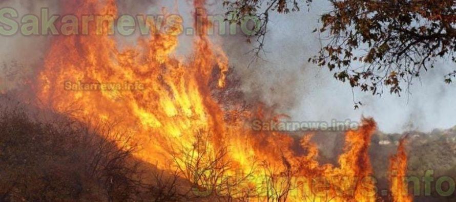 Пожар обхвана Сакар за два дни
