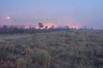 Пожарът край село Изворово е овладян