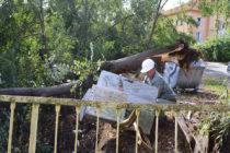 Какво прави Община Тополовград за ликвидиране последствията от бурята?
