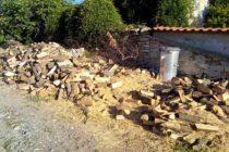 ЮИДП осигурило 230000 кубика дърва за огрев